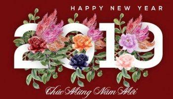 Chúc mừng năm Mậu Tuất 2019