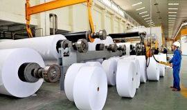 Mô hình kinh tế tuần hoàn: Câu chuyện từ doanh nghiệp ngành giấy.